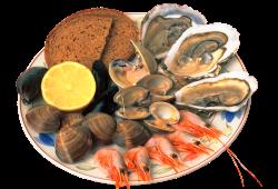 Морской обед. Полезные морепродукты.