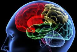 Чем опасно сотрясение мозга?