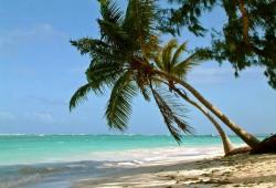 Айда в Доминикану!