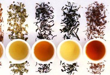 Самые популярные виды и сорта элитного чая